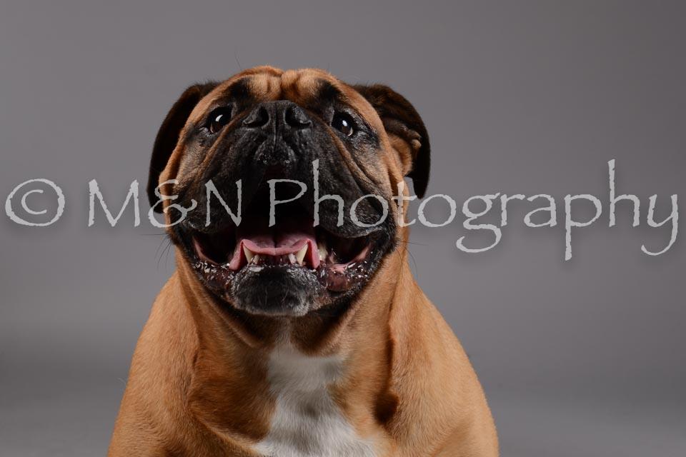 M&N Photography -DSC_1705