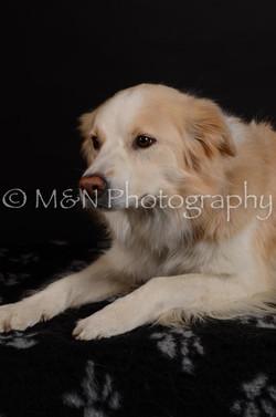 M&N Photography -DSC_5695