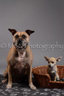 M&N Photography -DSC_1878