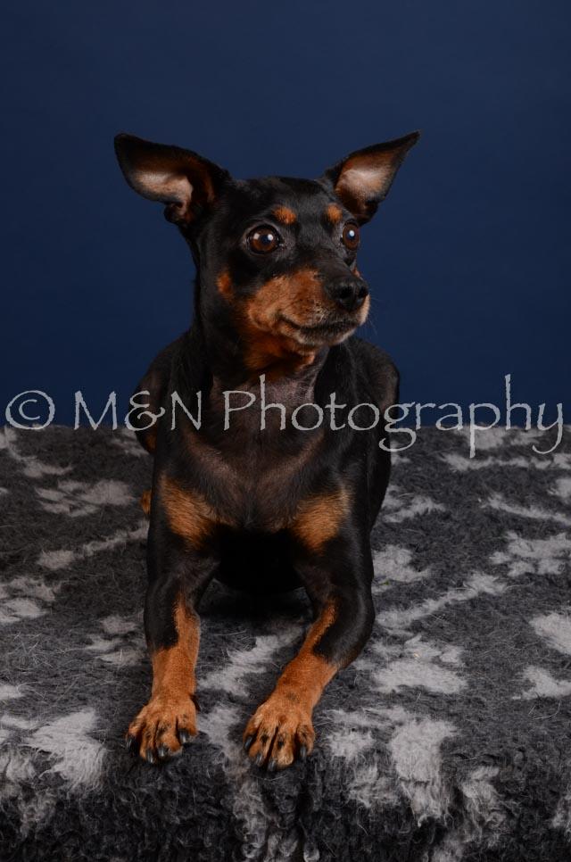 M&N Photography -DSC_3872