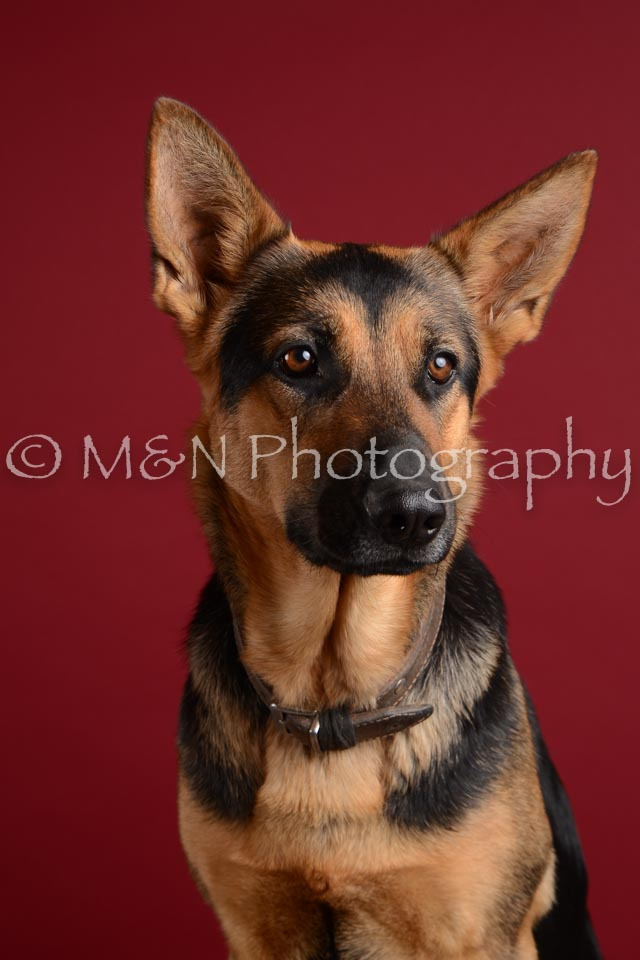 M&N Photography -DSC_3767