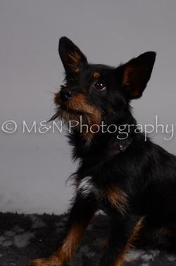 M&N Photography -DSC_2978