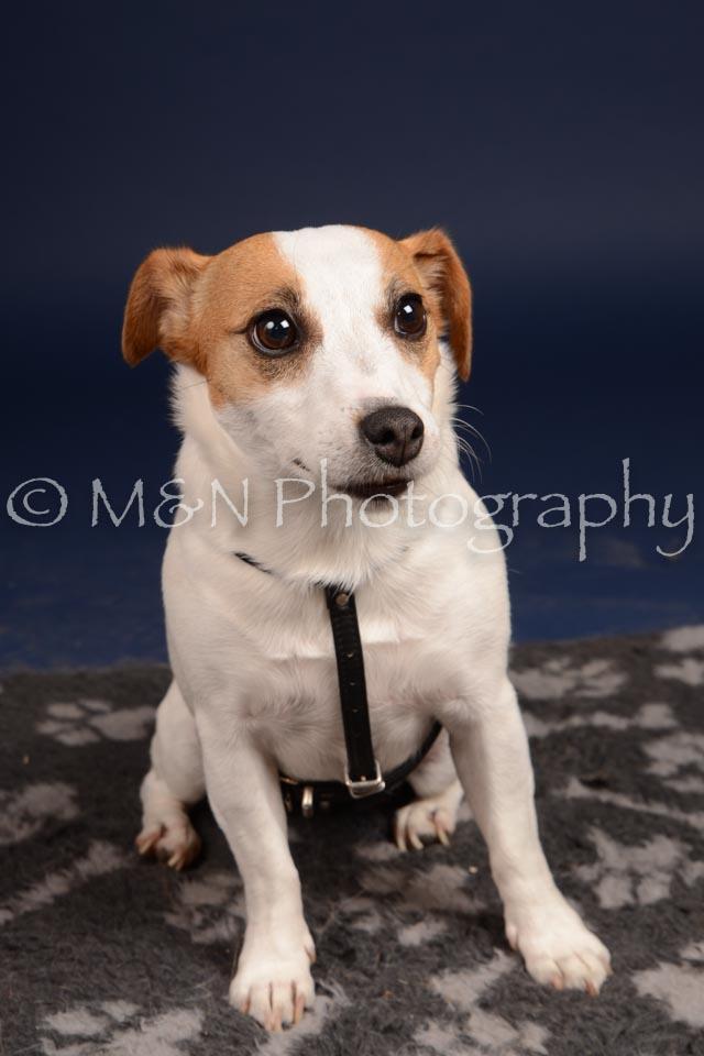 M&N Photography -DSC_0328