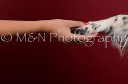 M&N Photography -DSC_3326