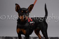 M&N Photography -DSC_2778