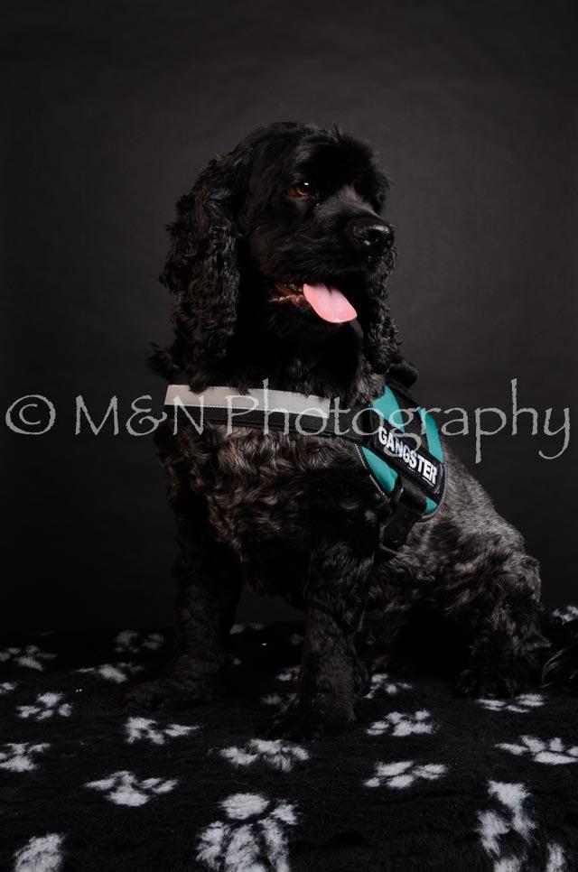 M&N Photography -DSC_5395