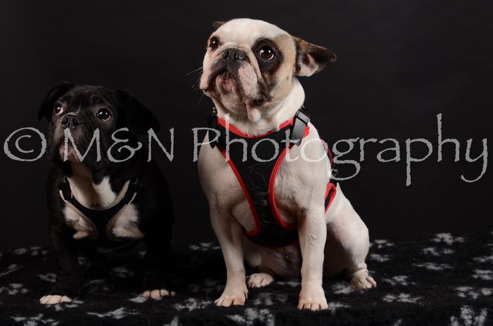 M&N Photography -DSC_5942
