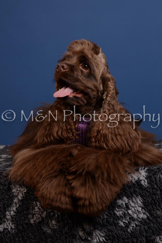 M&N Photography -DSC_4923