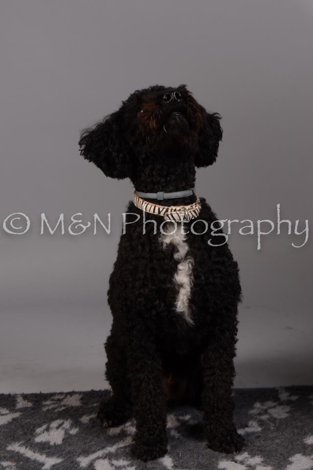 M&N Photography -DSC_2408