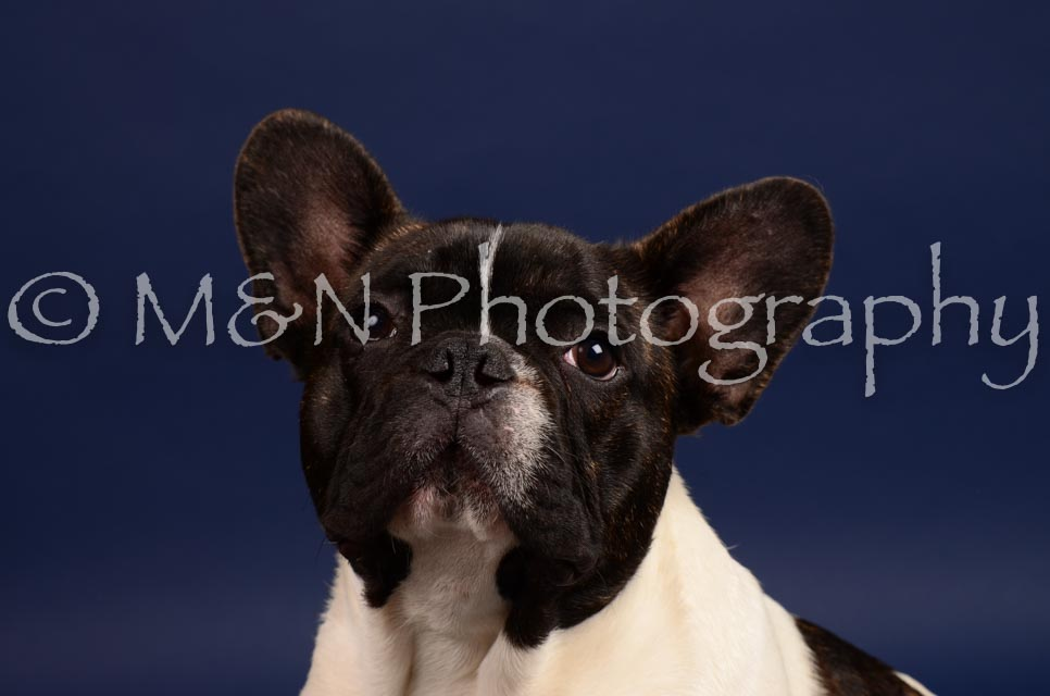 M&N Photography -IMG_4669