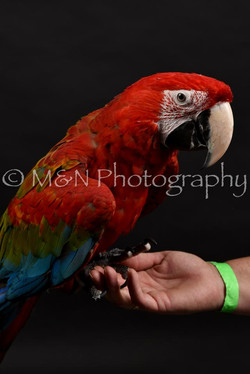 M&N Photography -DSC_2688