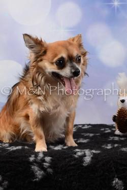 M&N Photography -DSC_6620