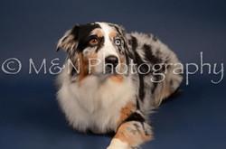 M&N Photography -DSC_3986
