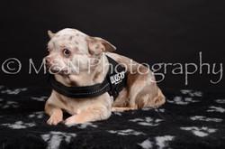 M&N Photography -DSC_5465