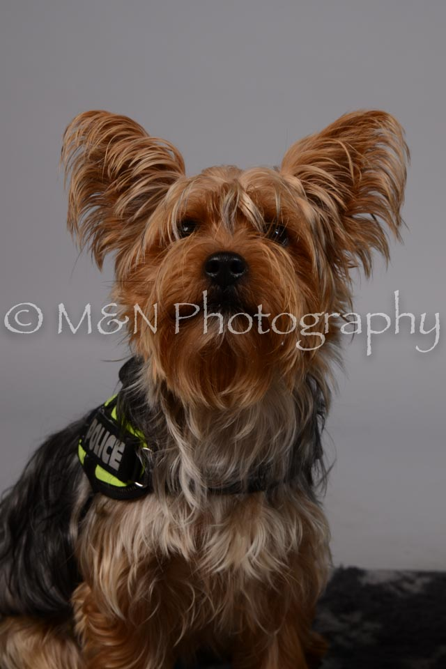M&N Photography -DSC_2632