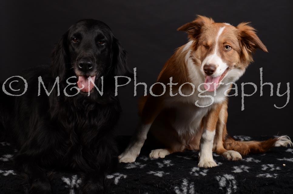M&N Photography -DSC_5846