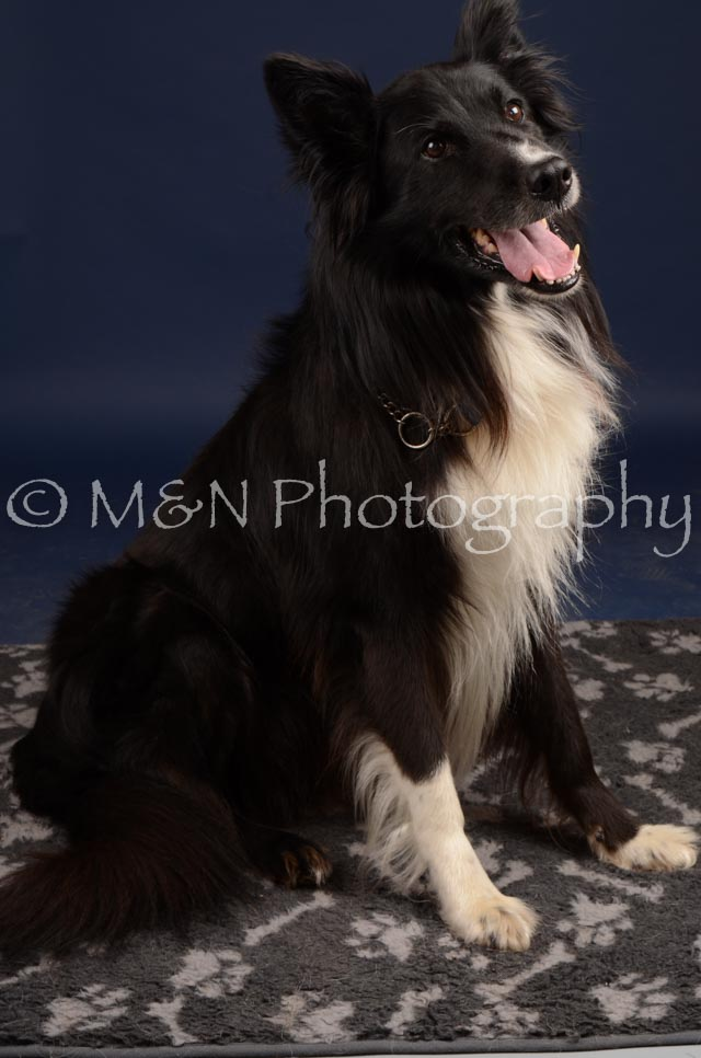 M&N Photography -DSC_0689