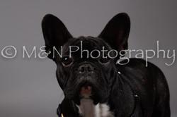 M&N Photography -DSC_1729