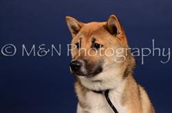 M&N Photography -IMG_4761