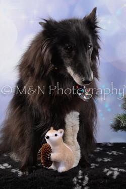 M&N Photography -DSC_6558