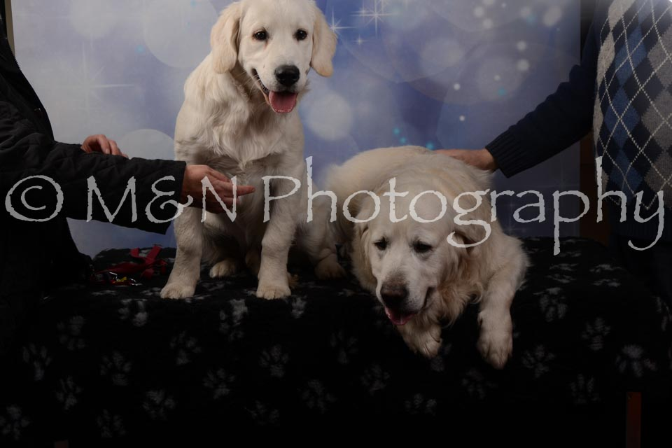 M&N Photography -DSC_7103