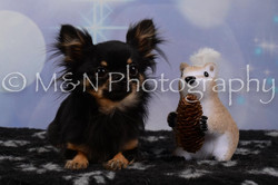 M&N Photography -DSC_6790