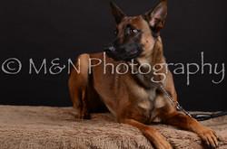 M&N Photography -DSC_5574