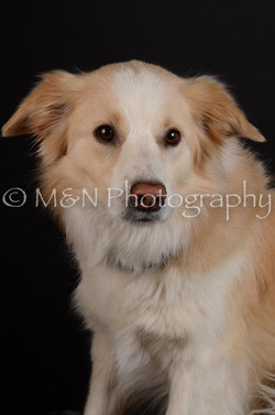 M&N Photography -DSC_5706