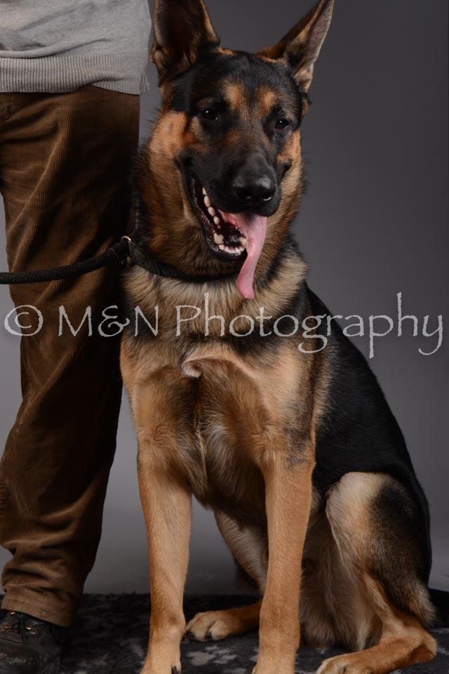 M&N Photography -DSC_1591