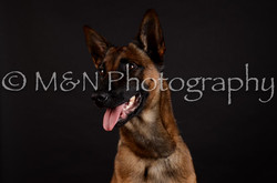 M&N Photography -DSC_5571