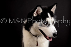 M&N Photography -DSC_5873