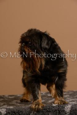 M&N Photography -_SNB0913