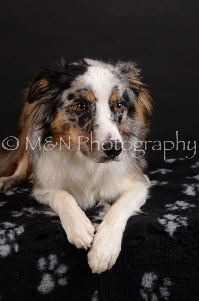 M&N Photography -DSC_5412
