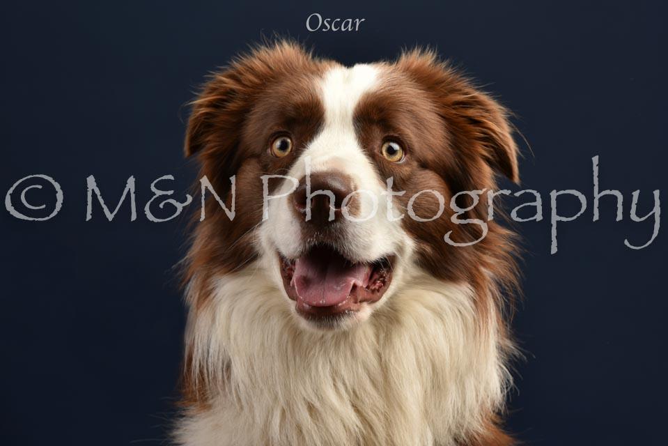 010 - Oscar -DSC_1783-2