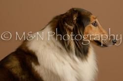 M&N Photography -_SNB0723