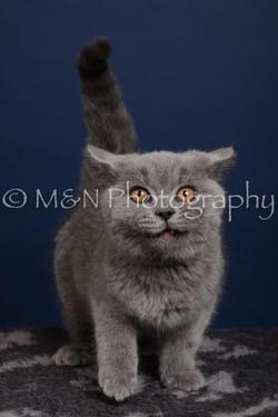 M&N Photography -DSC_4278