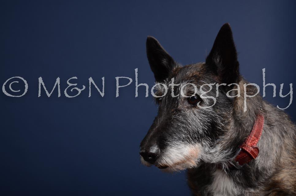 M&N Photography -DSC_3887