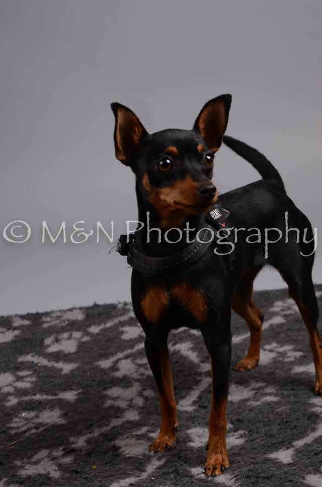 M&N Photography -DSC_2785