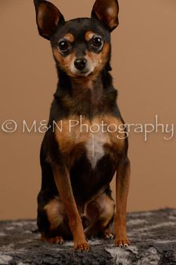 M&N Photography -_SNB0560