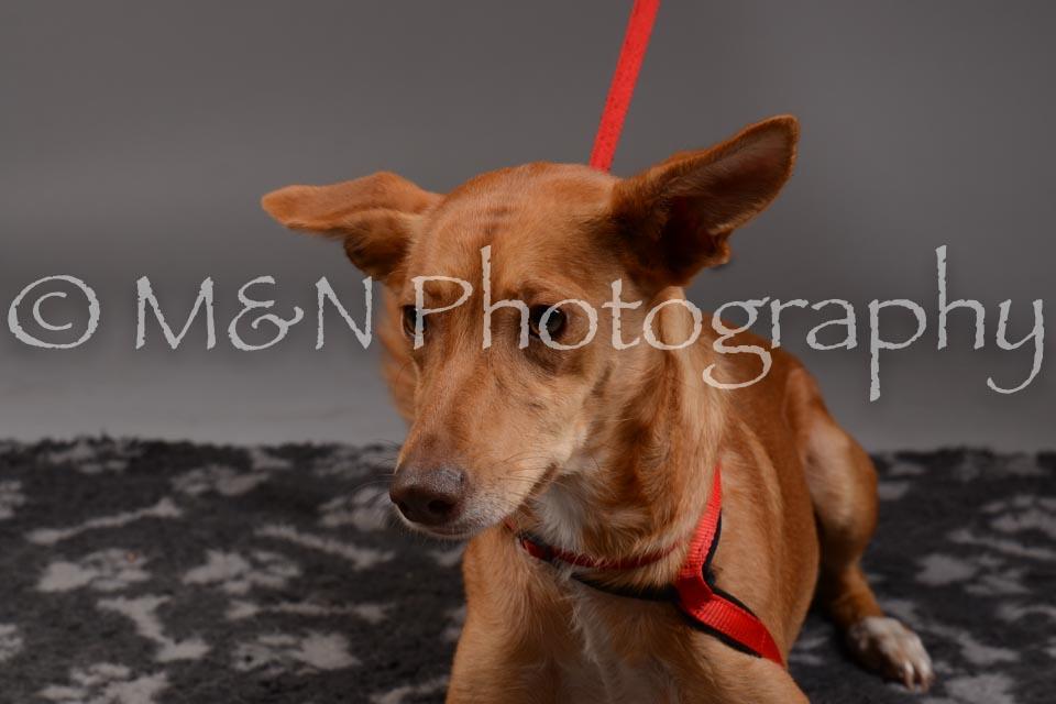 M&N Photography -DSC_1655
