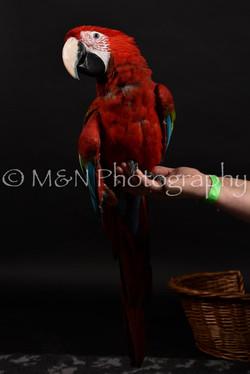 M&N Photography -DSC_2690