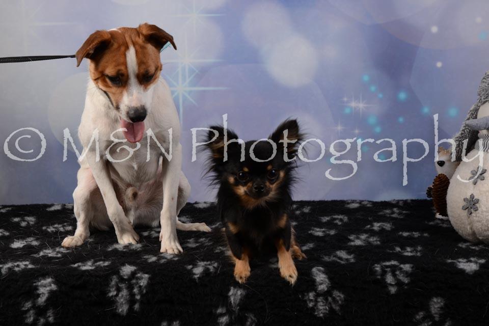 M&N Photography -DSC_6795