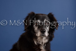 M&N Photography -DSC_4892