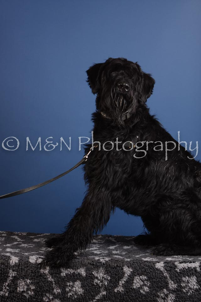M&N Photography -DSC_4969