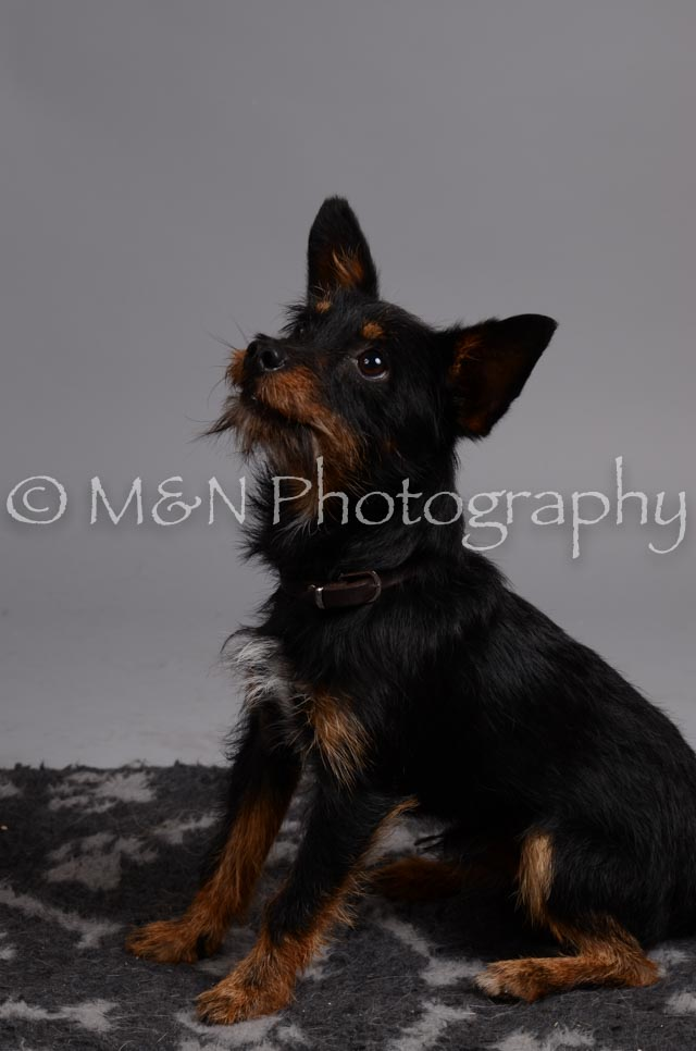 M&N Photography -DSC_2969