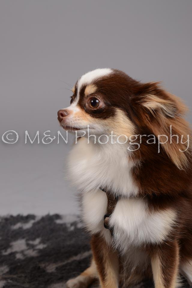 M&N Photography -DSC_2482