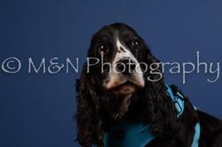 M&N Photography -DSC_5100