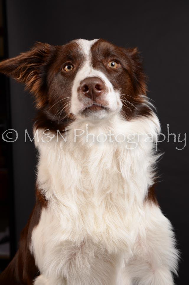 M&N Photography -DSC_5890