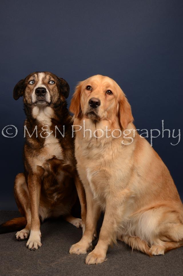 M&N Photography -DSC_4696