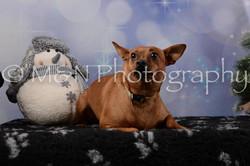 M&N Photography -DSC_6484